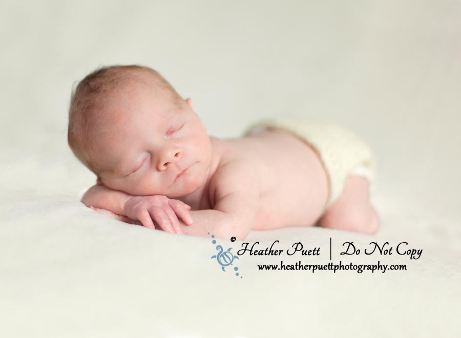 Marysville Washinton Newborn Photographer, Washington Photographer