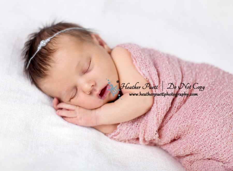 Annacortes Washington Newborn Photographer
