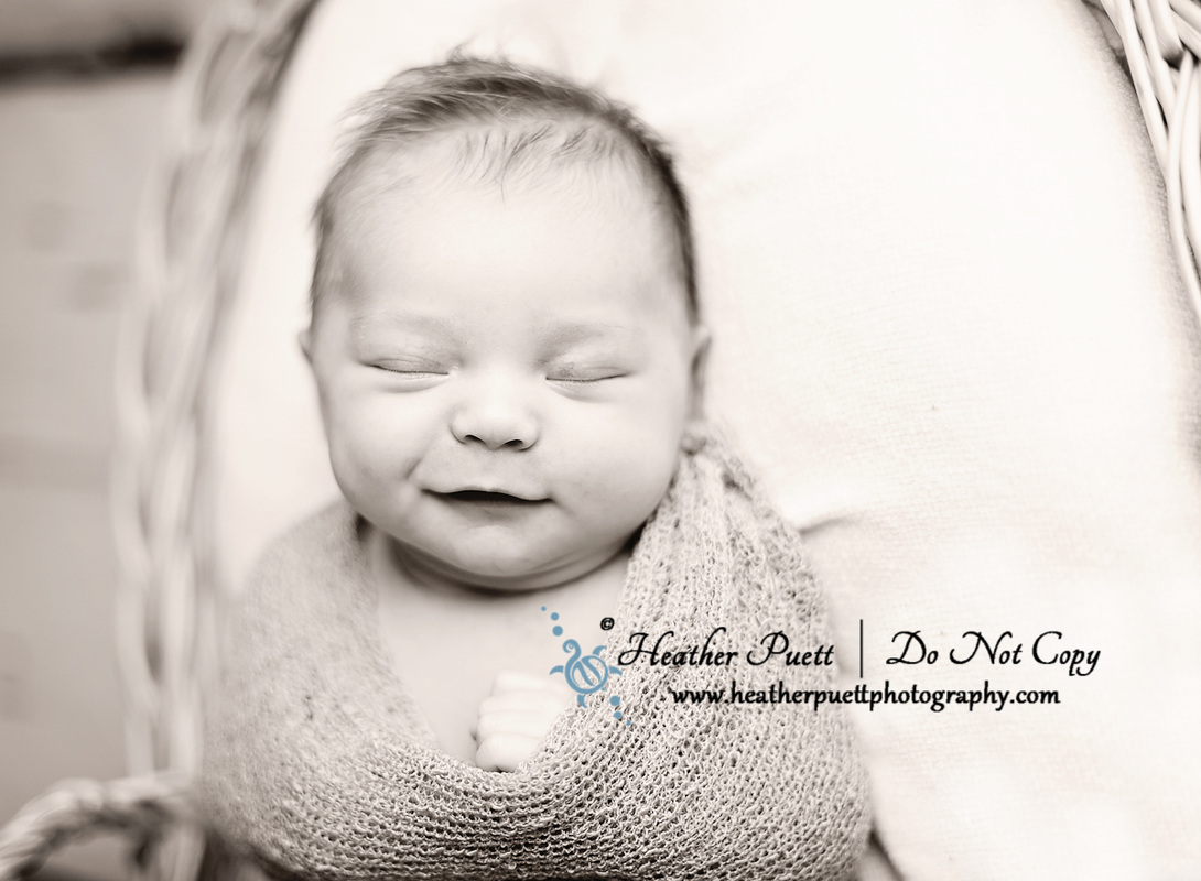 Washington Newborn Photographer