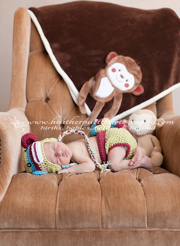 everett washington photographer, everett washington newborn photographer