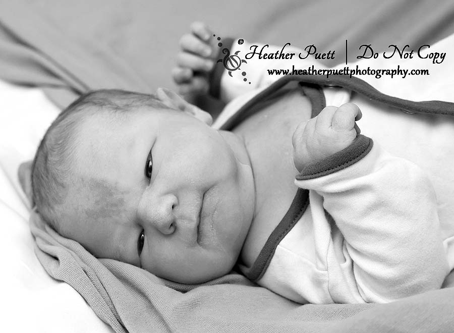 Marysville, Seattle, Kirkland, Washington newborn photographer