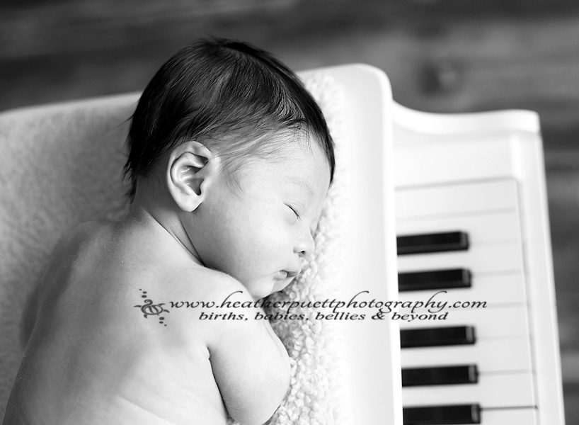 everett washington newborn photographer, everett washington photographer, seattle washington photographer, seattle Washington newborn photographer