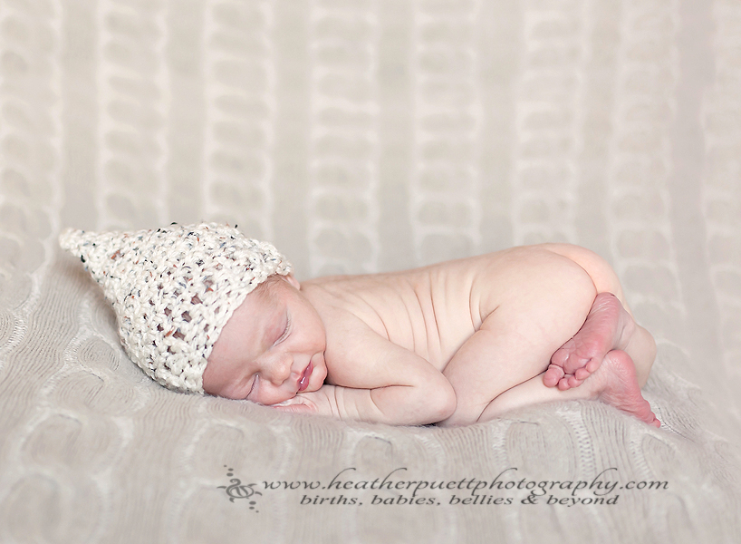 everett washington newborn photographer