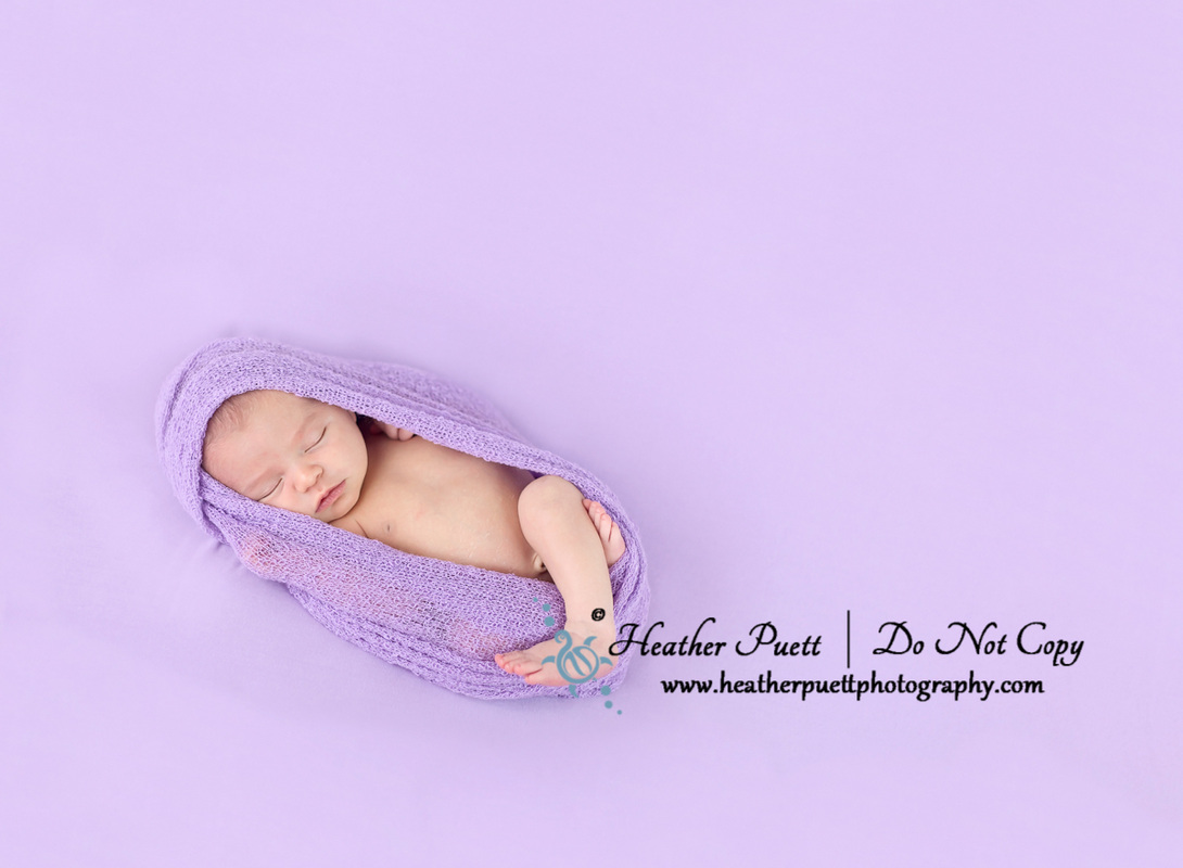 Washington State Newborn Photographer